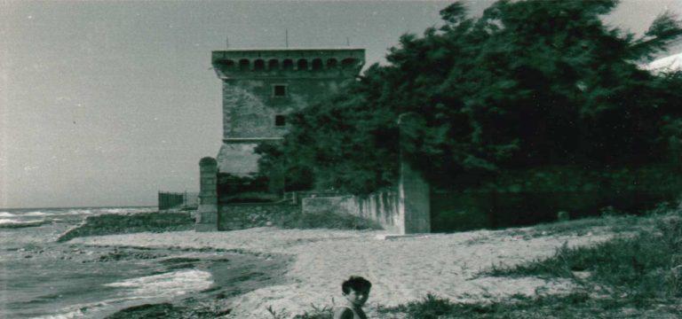 immagine-2